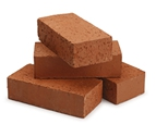 Carlton Bricks